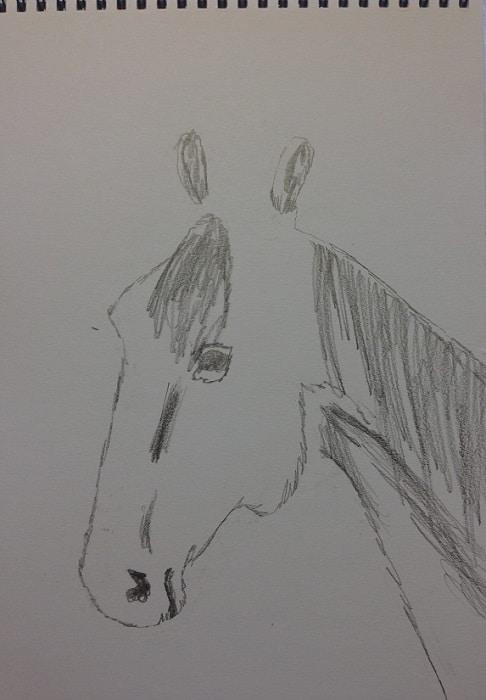Pienempi hevosen pää