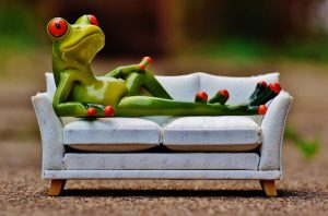 sammakko makaa sohvalla