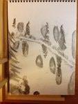 Piirros metsän puista